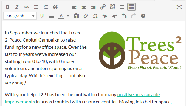 page editor - logo inserted to right of text